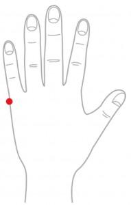 ツボ16脊柱点(せきちゅうてん)