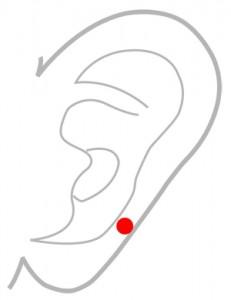 ツボ163瘈脈(けいみゃく)