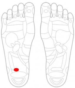 ツボ135盲腸