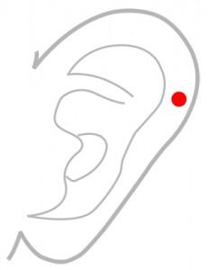ツボ164顱息(ろそく)
